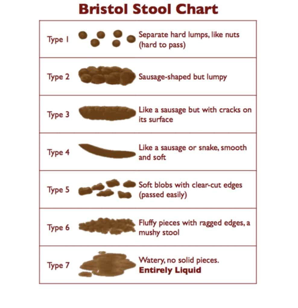 bristol_stool_chart