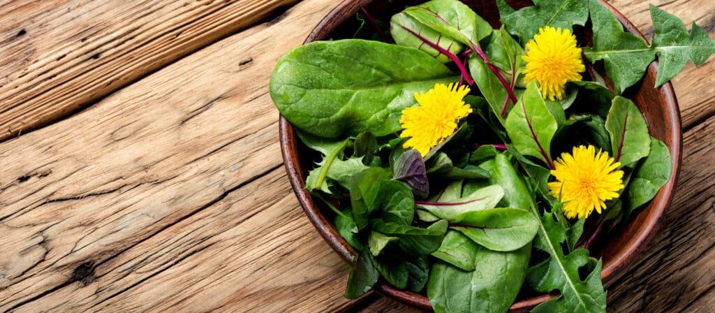 green-herbs-mix-salad